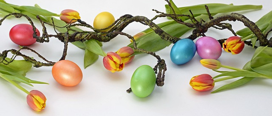 tulips, tree and eggs as fun Easter decorations