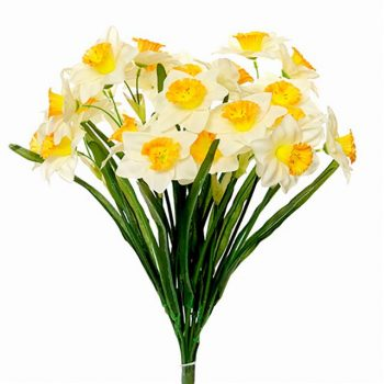 two tone silk daffodils