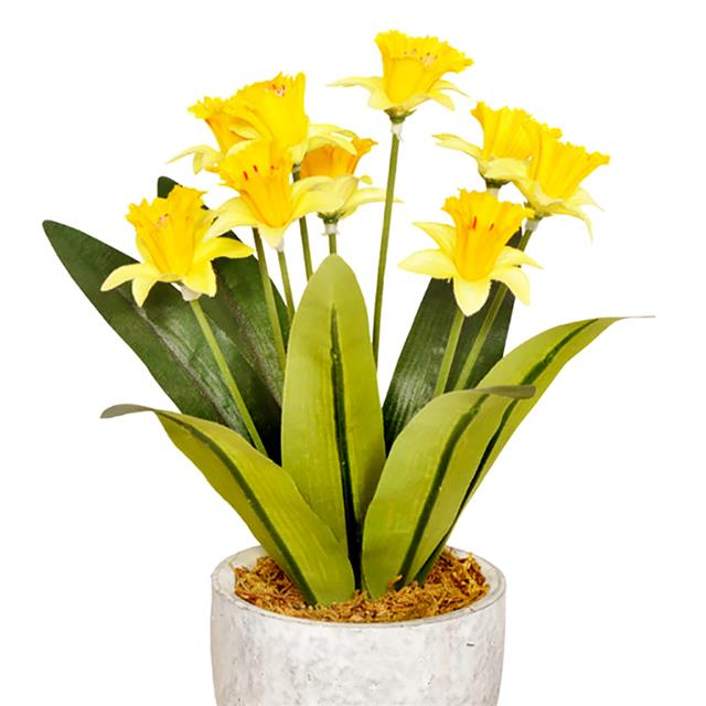 Artificial Narcissus In Ceramic Pot Artificial Daffodil Plant Shelf Edge Uk