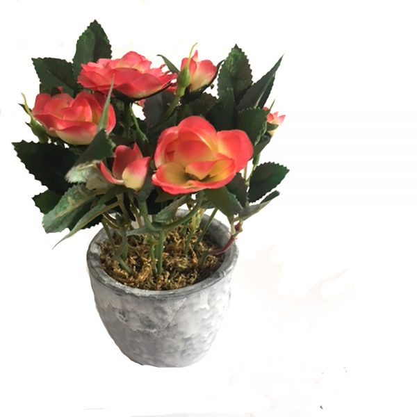artificial coral rose bush in grey pot
