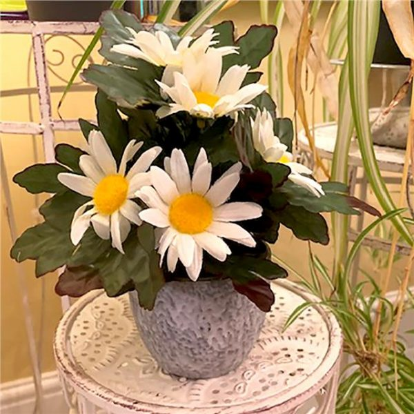 potted artificial daisy plant