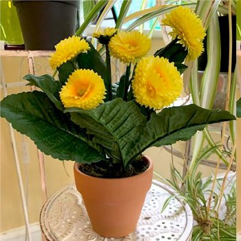 potted artificial bellis daisy plant
