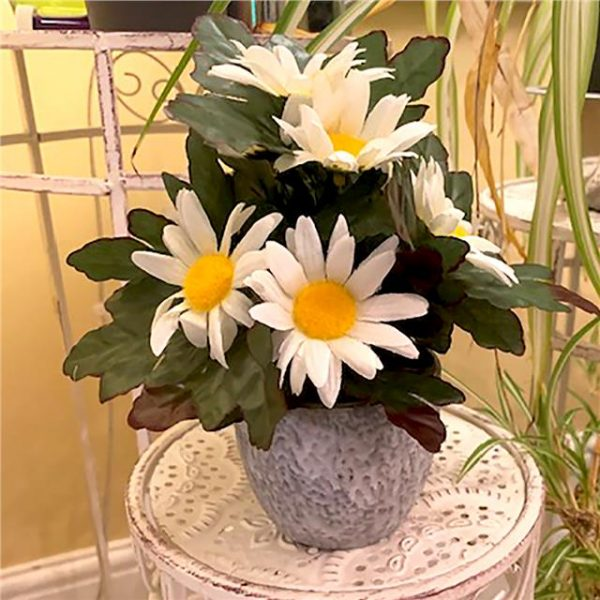 artificial daisy plant in pot