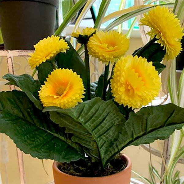 yellow artificial bellis daisy plant