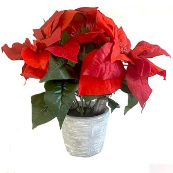 red artificial potted poinsettia in grey pot