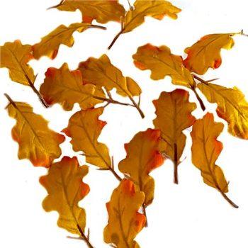 16 orange oak leaves