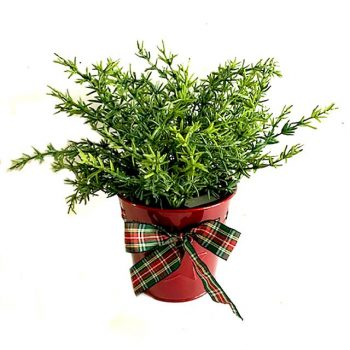 Artificial Potted Thyme Herb Plant in Tartan Pot with Ribbon