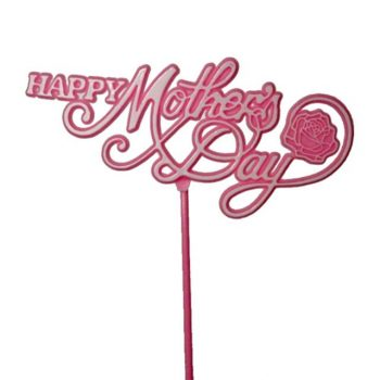 https://shared1.ad-lister.co.uk/UserImages/7eb3717d-facc-4913-a2f0-28552d58320f/Img/valentinesfl/Mother-Day-Plastic-Pick-Pink.jpg