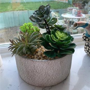 Artificial Succulent Plant Arrangement