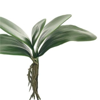 Artificial Orchid Leaves and Roots