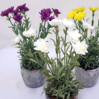 Artificial Mini Pinks (Dianthus) in Decorative Pot