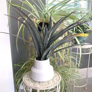 Artificial Dragon Palm Plant