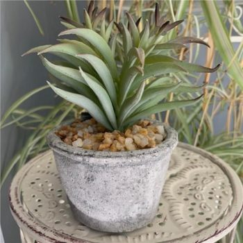 Artificial Spiky Succulent Plant