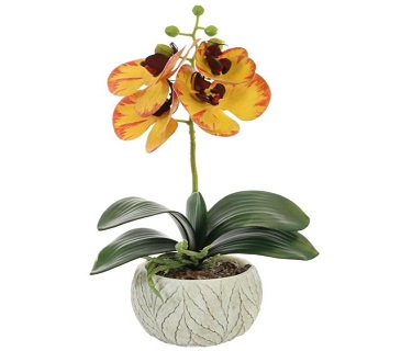 Artificial Phaleanopsis Orchid Plant Blazed Yellow