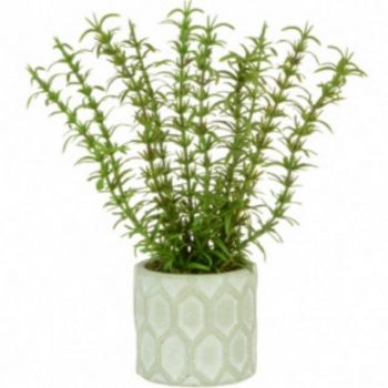 Artificial Potted Rosemary Plant