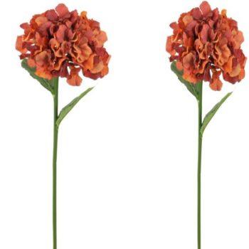 https://shared1.ad-lister.co.uk/UserImages/7eb3717d-facc-4913-a2f0-28552d58320f/Img/artificialfl/Pair-of-Autumn-Russett-Hydrangea-Flowers.jpg