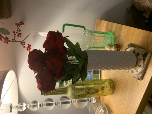 Christmas Rose Bush