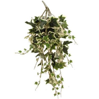 Artificial Large Flocked Trailing Ivy Bush