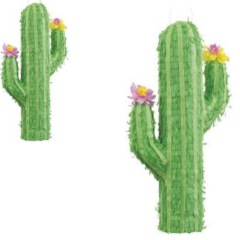 Flowered Cactus 3D Pinata