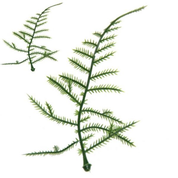 Plastic Asparagus Fern Leaves 100