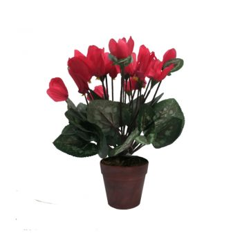 Artificial Potted Cyclamen Plant - Red