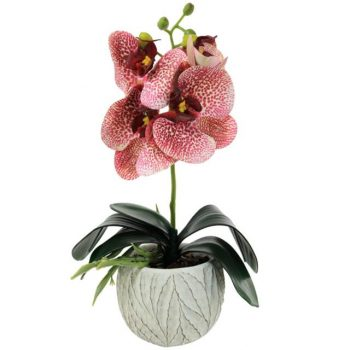 Artificial Jaguar Pink Potted Orchid